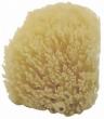 Buretă naturală marină, 2 buc